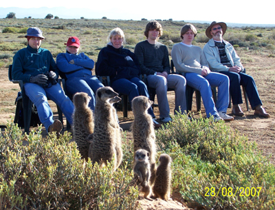 watch film meerkat meerkats suricate suricates tour tours magic 11111.jpg